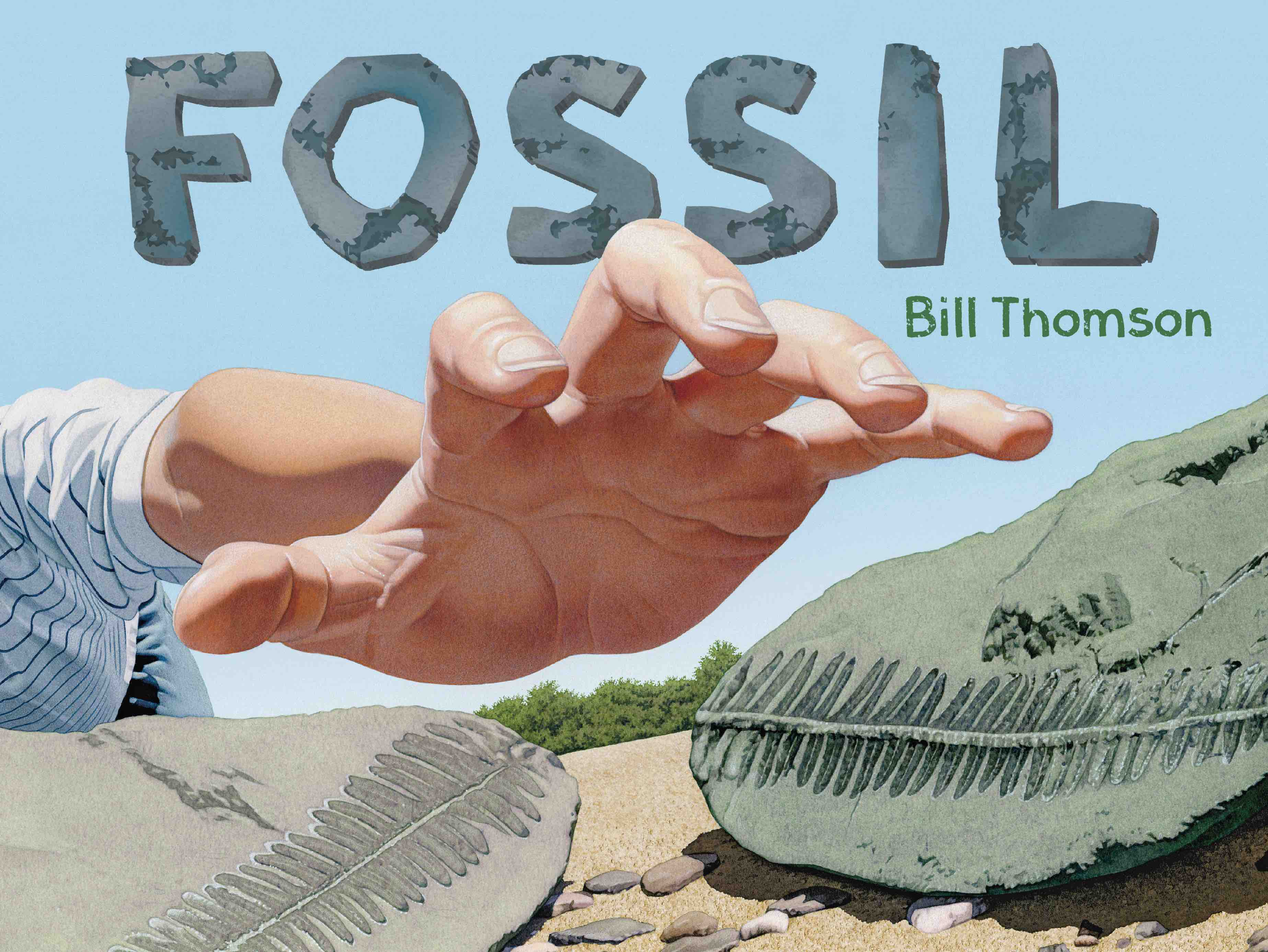 Fossil-cover