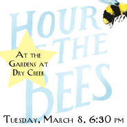 Hour of the Bees Square