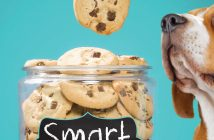smart_cookie_Elly Swartz