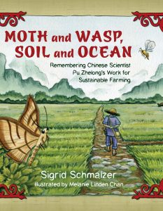 Moth and Wasp Soil and Ocea