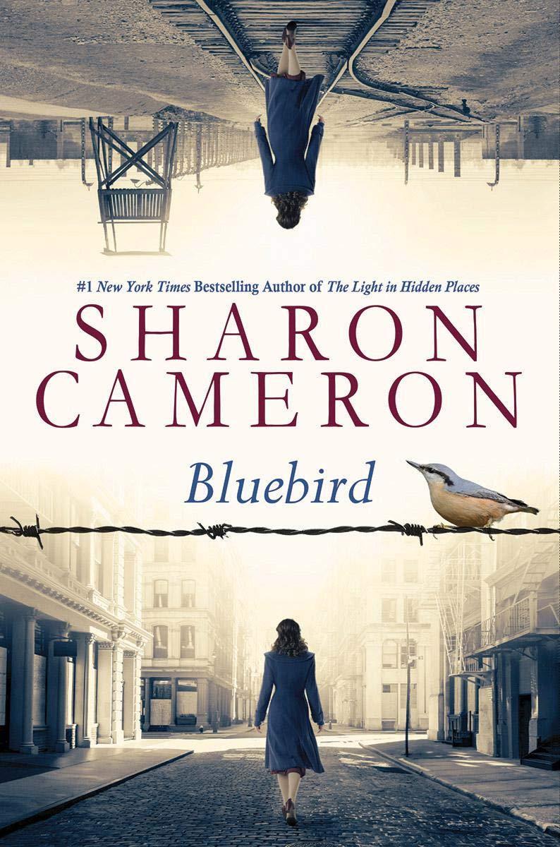 Sharon Cameron Bluebird